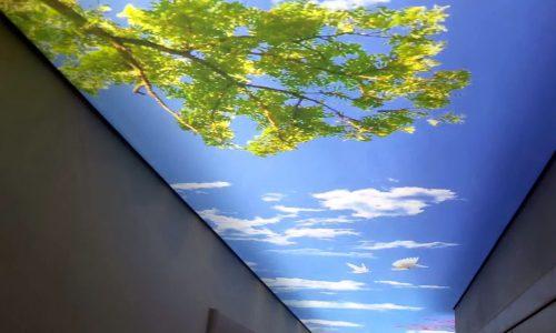 3d потолок 1
